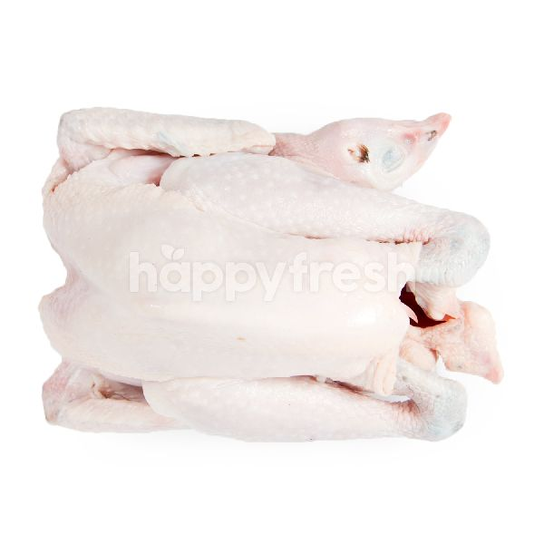 Product: Pure Kampong Chicken 7-8 - Image 1