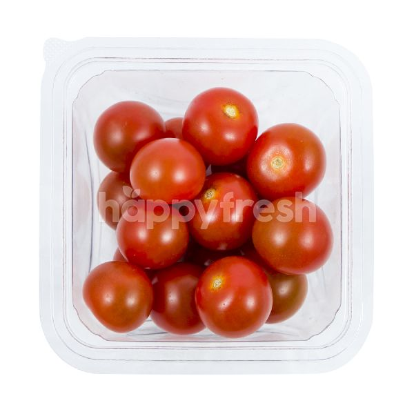Product: Highland Tomato Cherry Square - Image 2