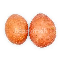 Pink Washed Potato ~300g
