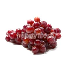 South Africa Red Grape
