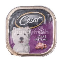 Cesar Lamb Flavoured Dog Food