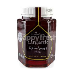 New Morning Organic Rainforest Honey