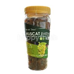 LOVE EARTH Organic Dried Muscat Raisins