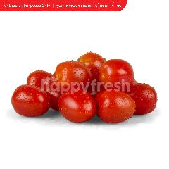 Royal Project Cherry Tomato