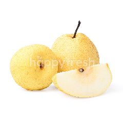 Chinese Gong Pear Loose