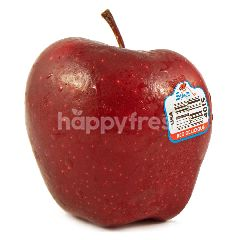 USA Red Delicious Apple