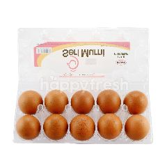 Seri Murni Chicken Eggs (10 Pieces)