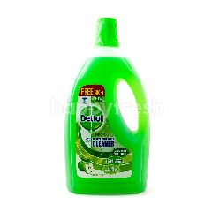 Dettol Multi Surface Cleaner Green Apple