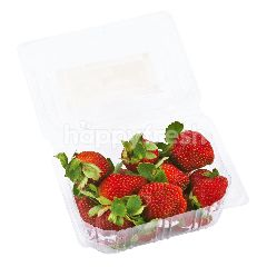 Yan's Fruits & Vegetables Strawberry A