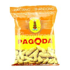 Pagoda Shandong Roasted Groundnuts