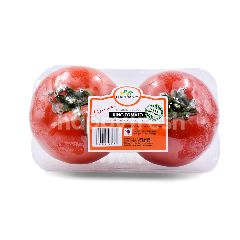 Food Farm Forest Vine Ripened King Tomato XL (2 Pieces)