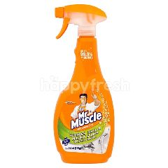 Mr Muscle Mold & Mildew 500ML