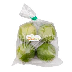 We Are Fresh Seedless Lime