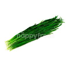 Chives 200g+-