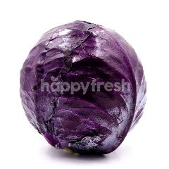 Australia Red Cabbage