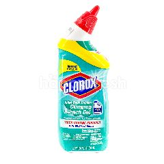 Clorox Toilet Bowl Cleaner - Clinging Bleach Gel